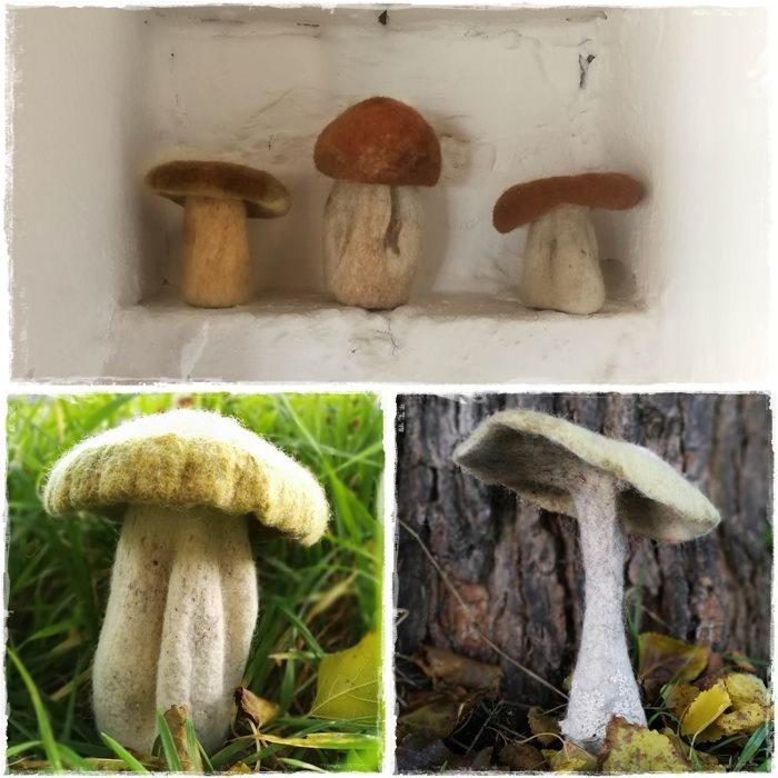 felting mushroom toadstool fungi